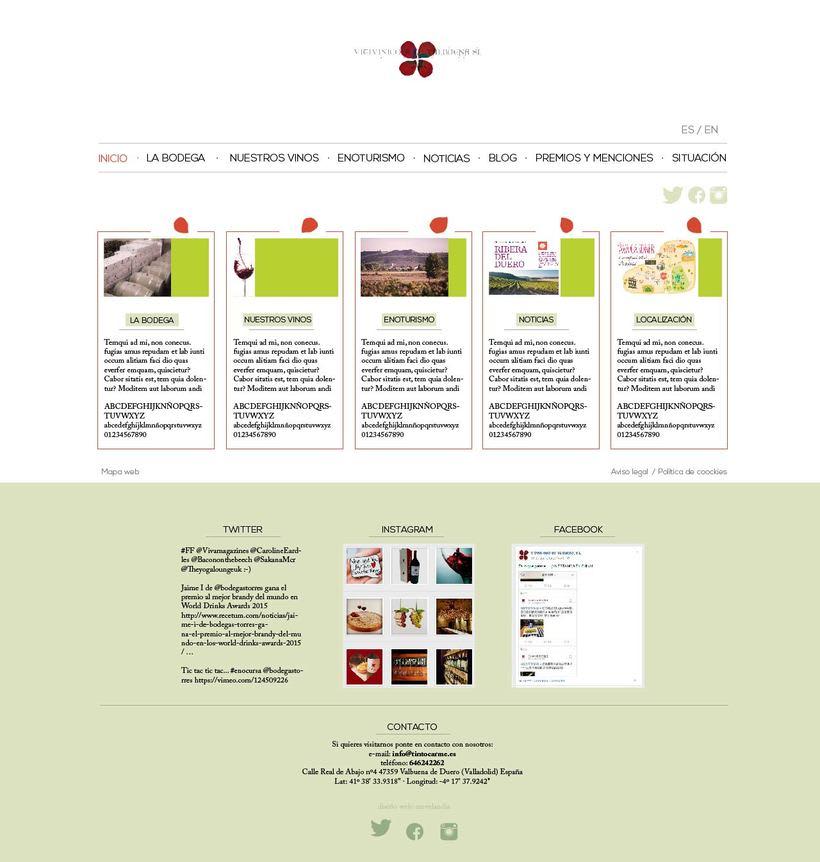 Diseño gráfico web bodegas Carme, Vitivinícola de Valbuena 0