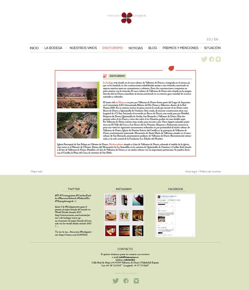 Diseño gráfico web bodegas Carme, Vitivinícola de Valbuena 1