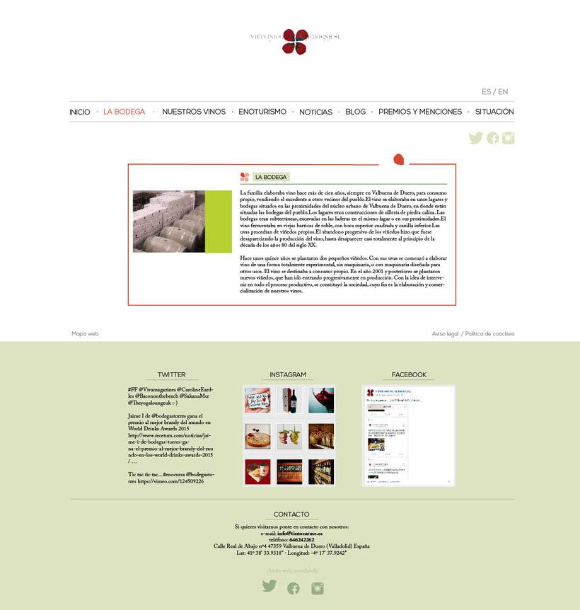 Diseño gráfico web bodegas Carme, Vitivinícola de Valbuena 2