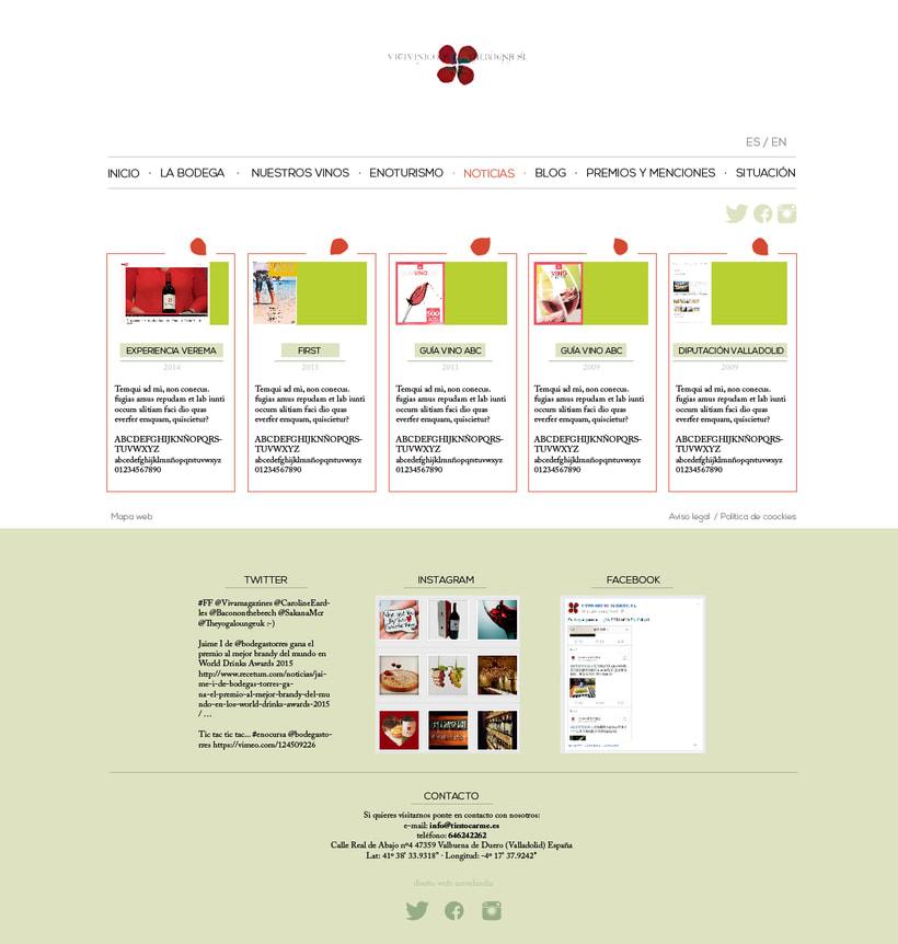 Diseño gráfico web bodegas Carme, Vitivinícola de Valbuena 3