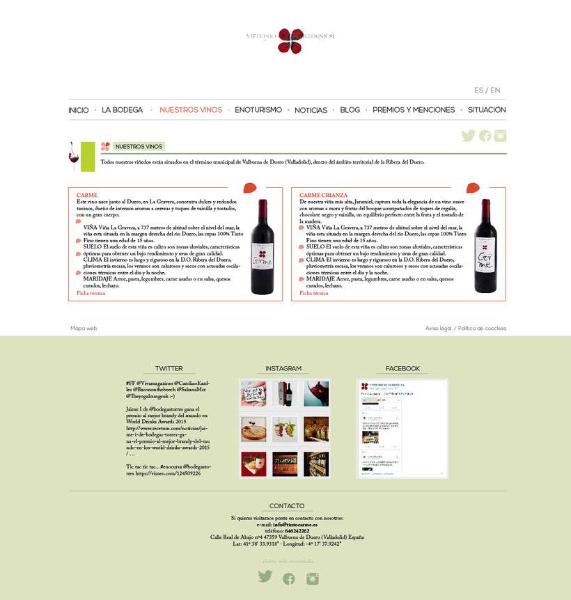 Diseño gráfico web bodegas Carme, Vitivinícola de Valbuena 4