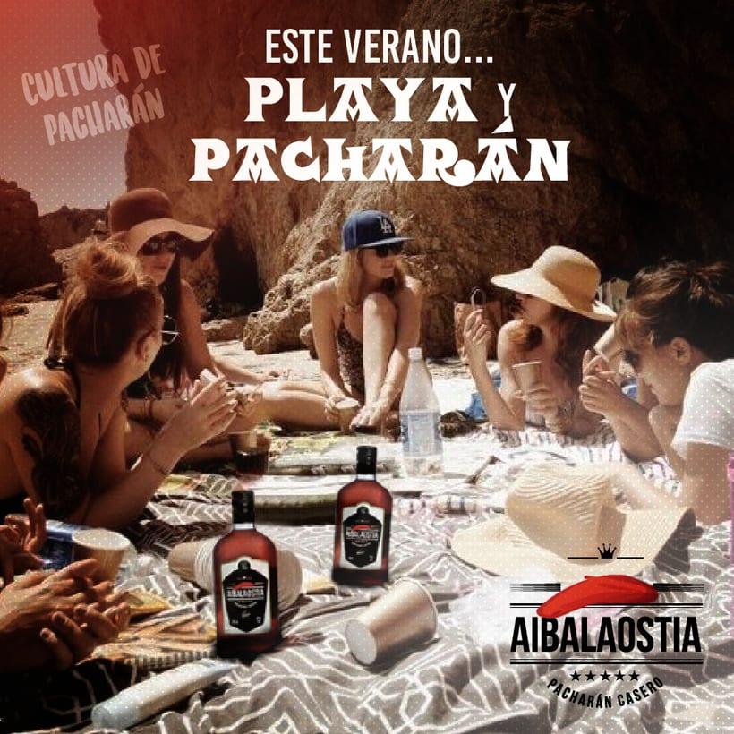 AIBALAOSTIA (Pacharán Casero) 6