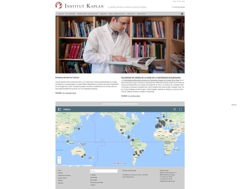 Web para Institut Kaplan 3