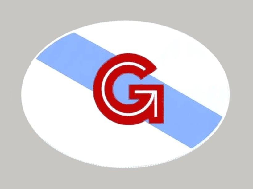Adesivos para Identidade GZ em placas de automóvel 2