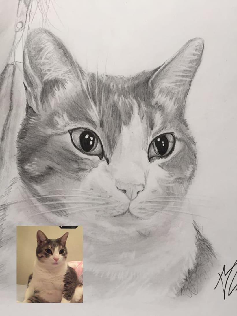 Retratos/Dibujos 13