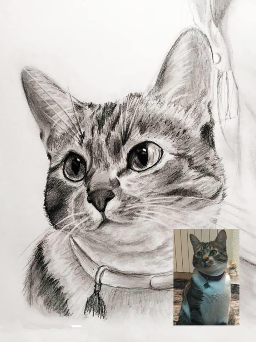 Retratos/Dibujos 28