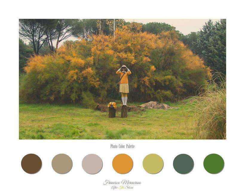 Fotografía inspirada en las películas de Wes Anderson 4