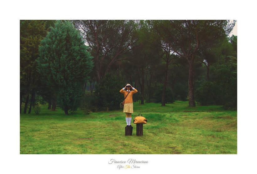 Fotografía inspirada en las películas de Wes Anderson 11