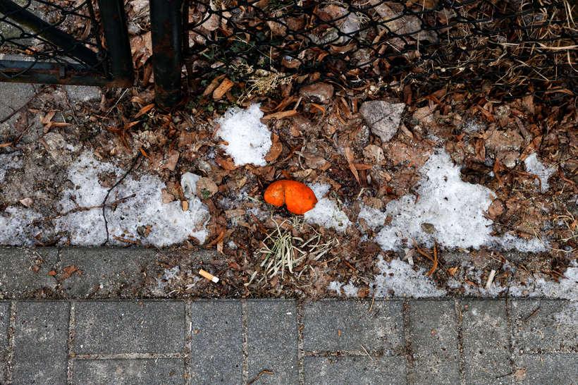 Paisajes del final de un invierno en Polonia  2