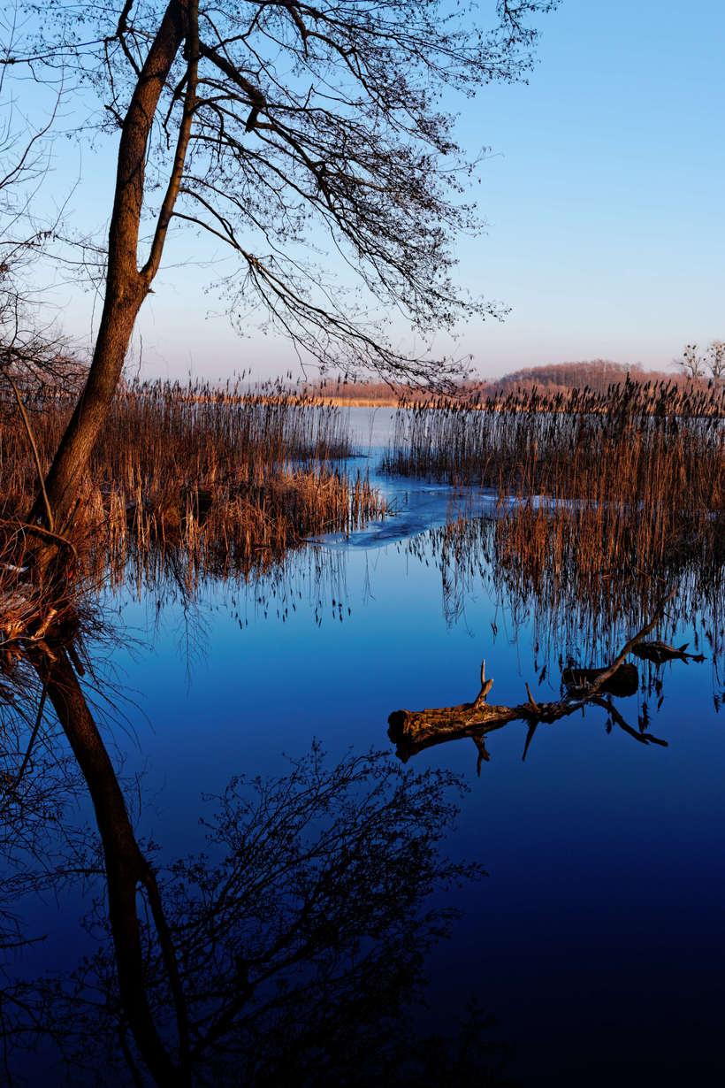 Paisajes del final de un invierno en Polonia  7
