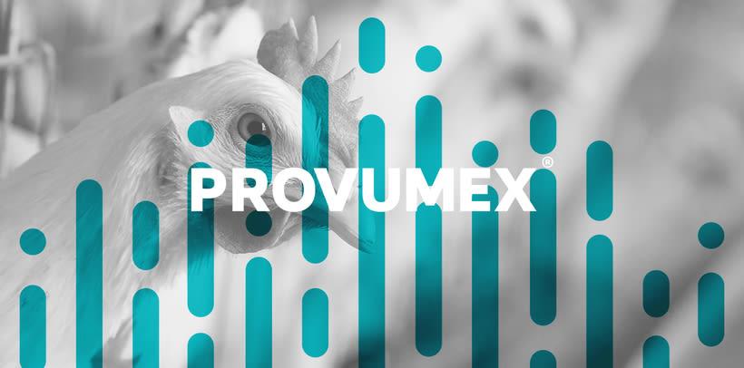 Provumex 6