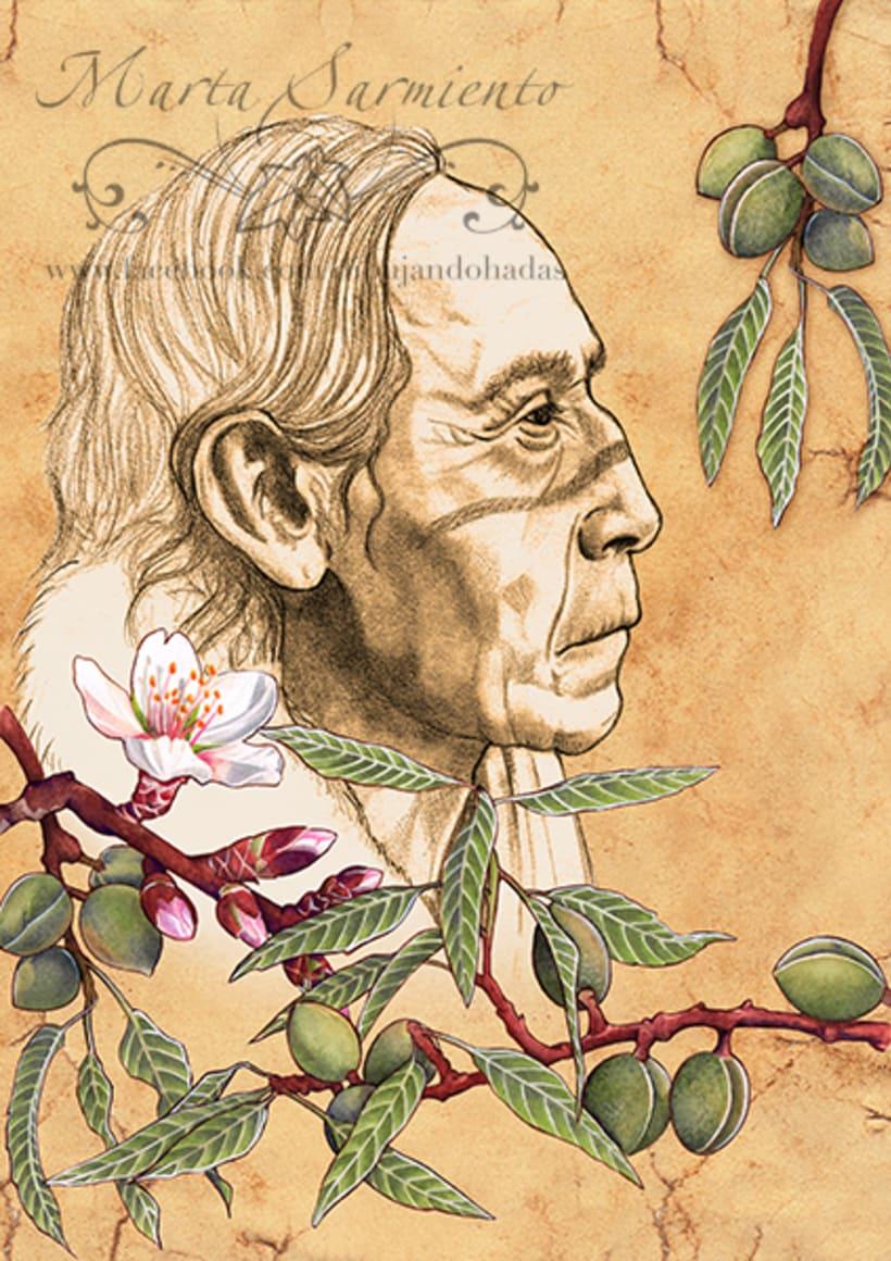 """Ilustraciones Libro """"Los Árboles Sanadores"""" 0"""