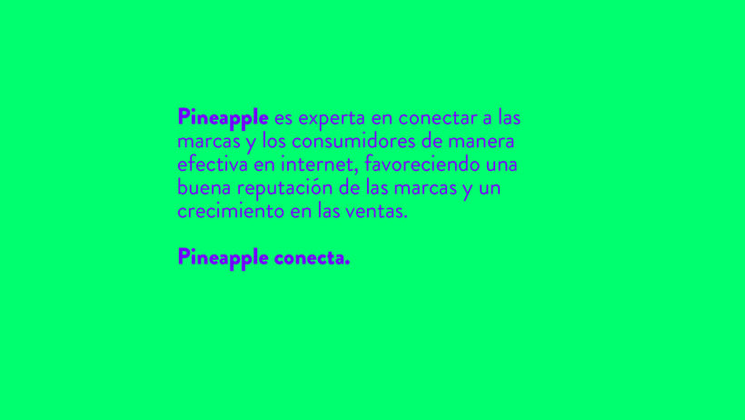 Pineapple socialmedia & networking 16
