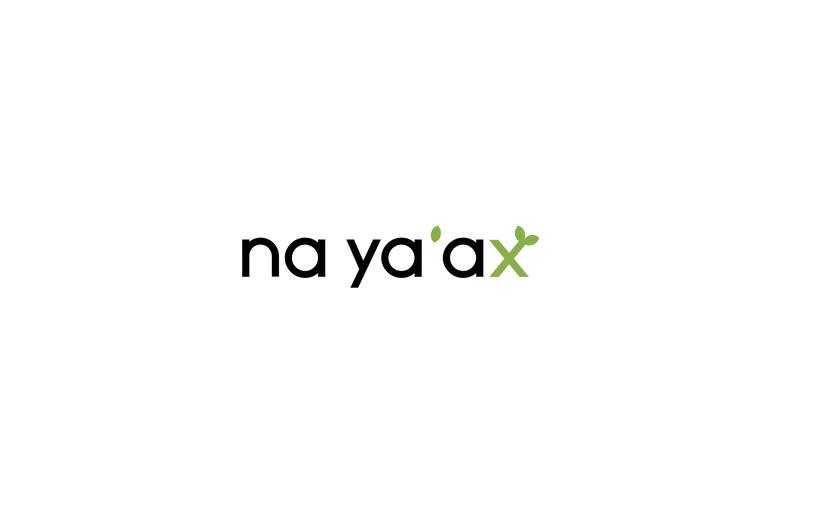 Na Ya'Ax 1