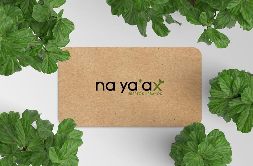 Na Ya'Ax 6