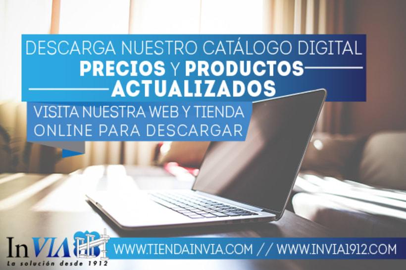 InVIA 10