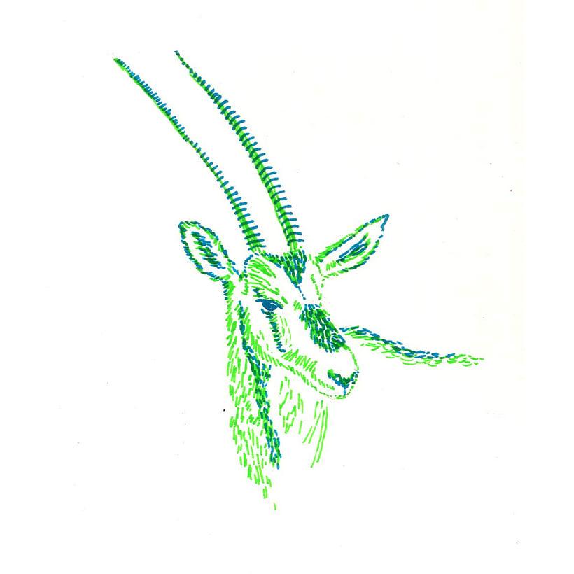 Animals 8