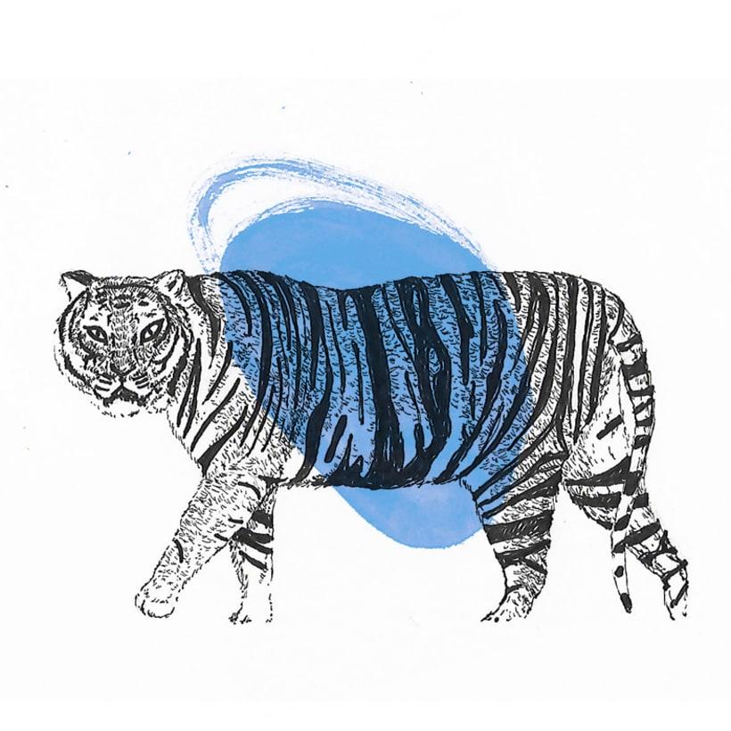 Animals 14