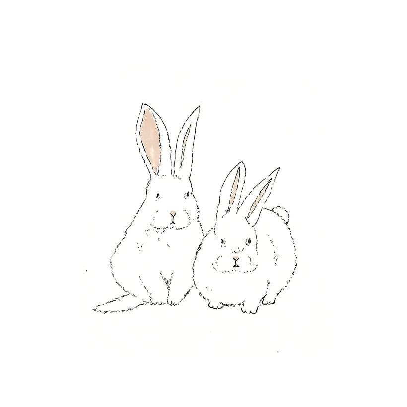 Animals 17