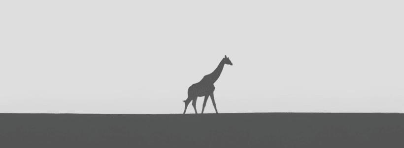 Animals 7