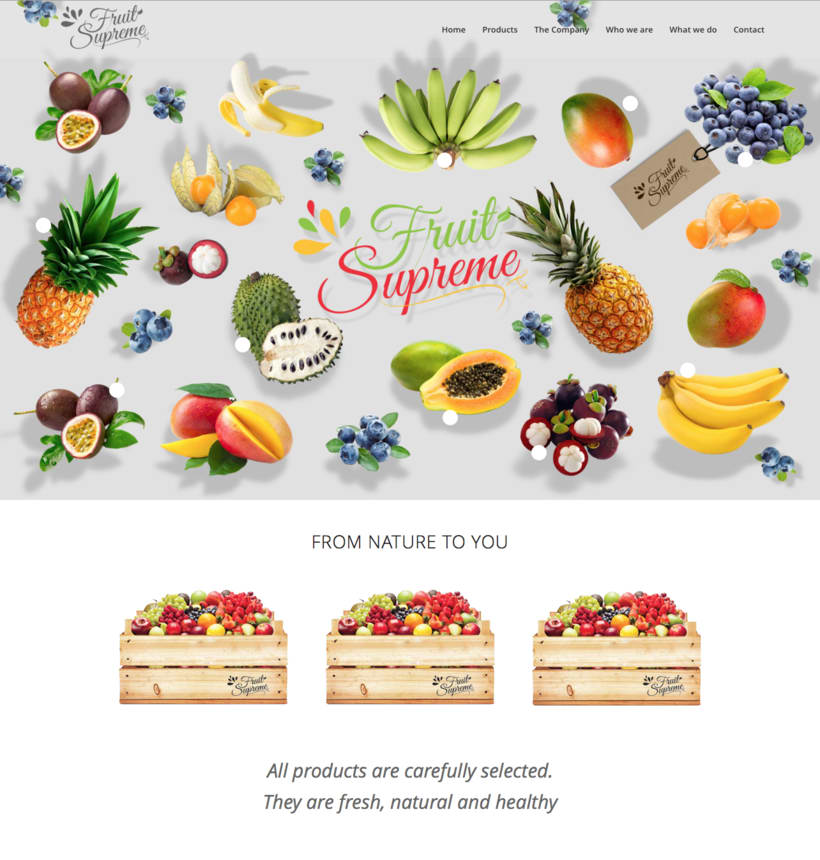 Fruit Supreme - Branding  - Web 0