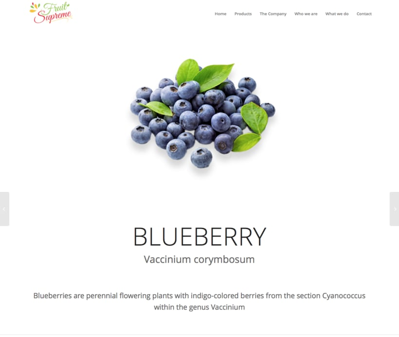 Fruit Supreme - Branding  - Web 1