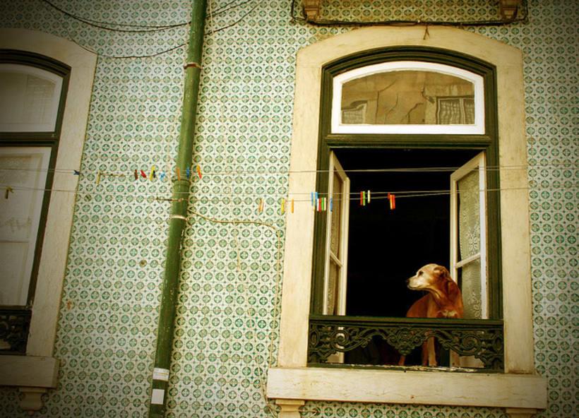 Lisboa - Fotografía 3