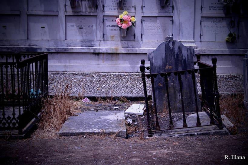 Abandonado; cementerio de Lisboa 5