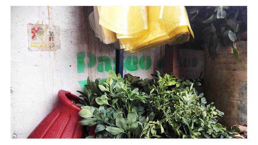Identidad Paseo de los Yuyos - Mercado Nº 4  de Asunción. 2