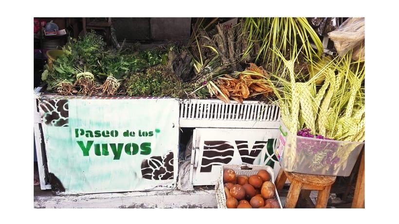 Identidad Paseo de los Yuyos - Mercado Nº 4  de Asunción. 8