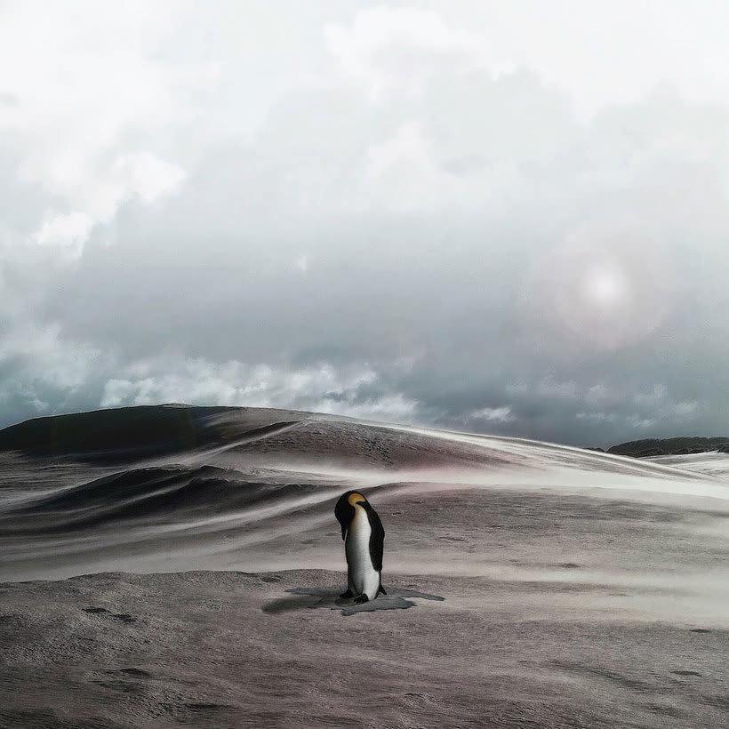 Karen Cantuq reinventa la naturaleza con sus collages fotorrealistas 6