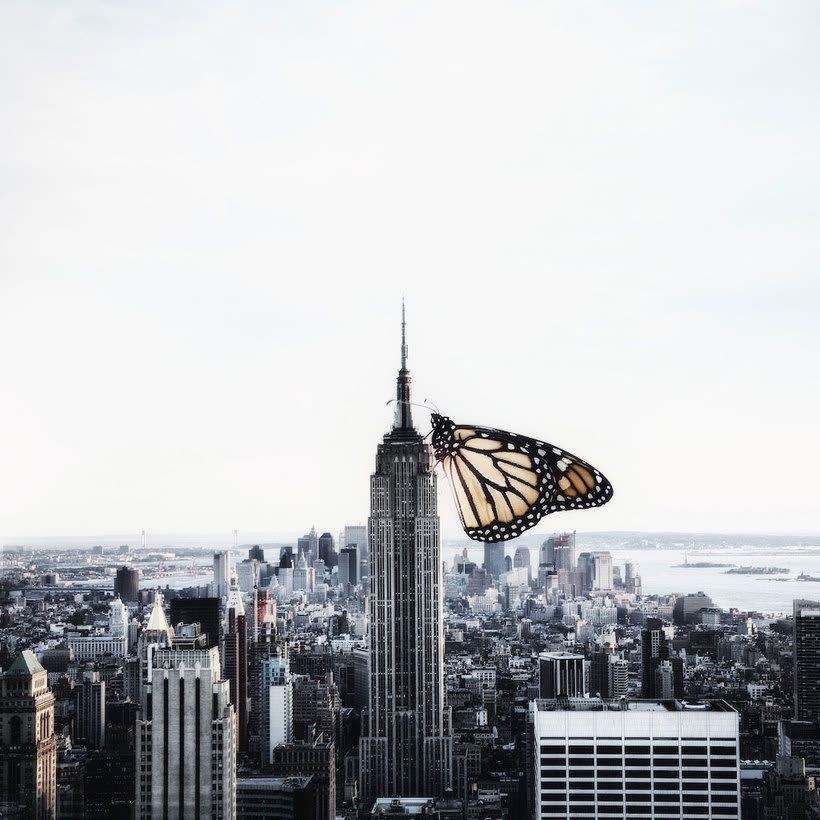 Karen Cantuq reinventa la naturaleza con sus collages fotorrealistas 11