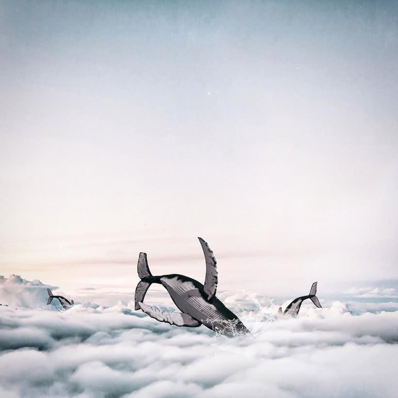 Karen Cantuq reinventa la naturaleza con sus collages fotorrealistas 15