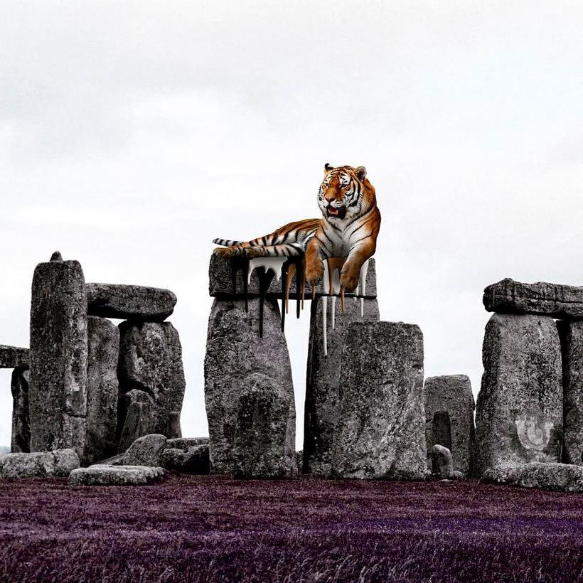Karen Cantuq reinventa la naturaleza con sus collages fotorrealistas 19