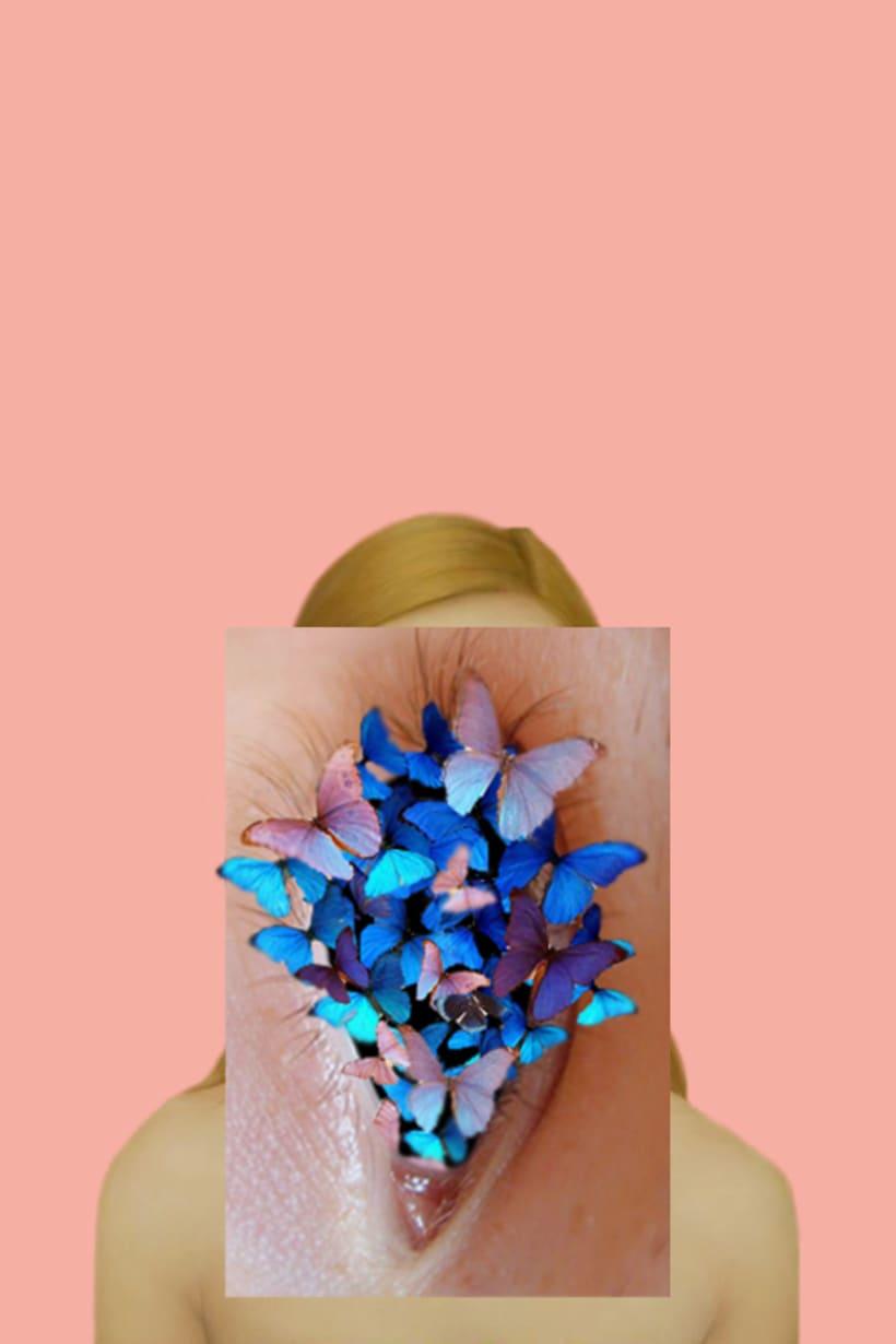 -Butterflies -1