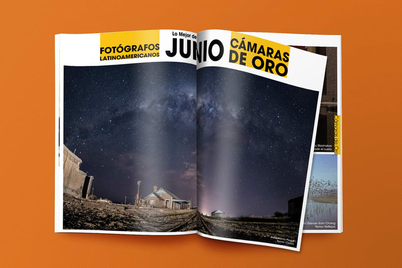 Editorial/Revista digital Fotógrafos Latinoamericanos  2