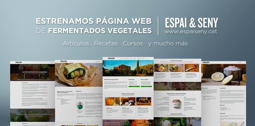Rediseño web Espai & Seny (en desarrollo) 4