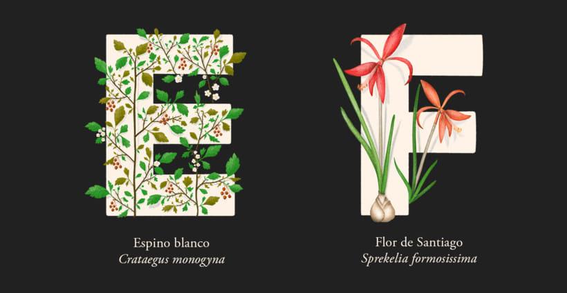 EL ABECEDARIO DE PLANTAS Y FLORES DE PIXELBOX 4