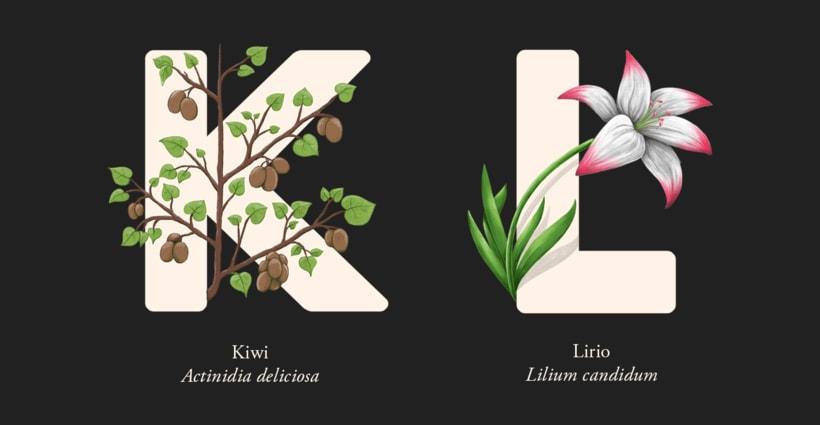 EL ABECEDARIO DE PLANTAS Y FLORES DE PIXELBOX 7