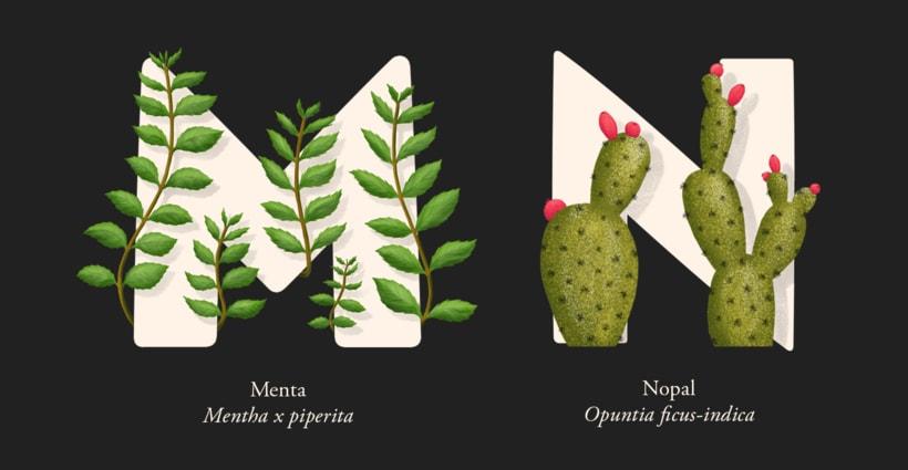EL ABECEDARIO DE PLANTAS Y FLORES DE PIXELBOX 8