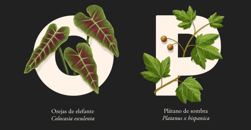 EL ABECEDARIO DE PLANTAS Y FLORES DE PIXELBOX 9