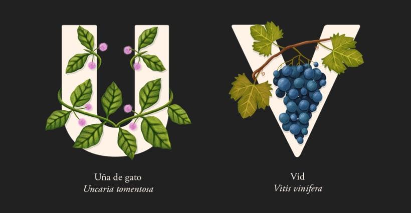 EL ABECEDARIO DE PLANTAS Y FLORES DE PIXELBOX 12
