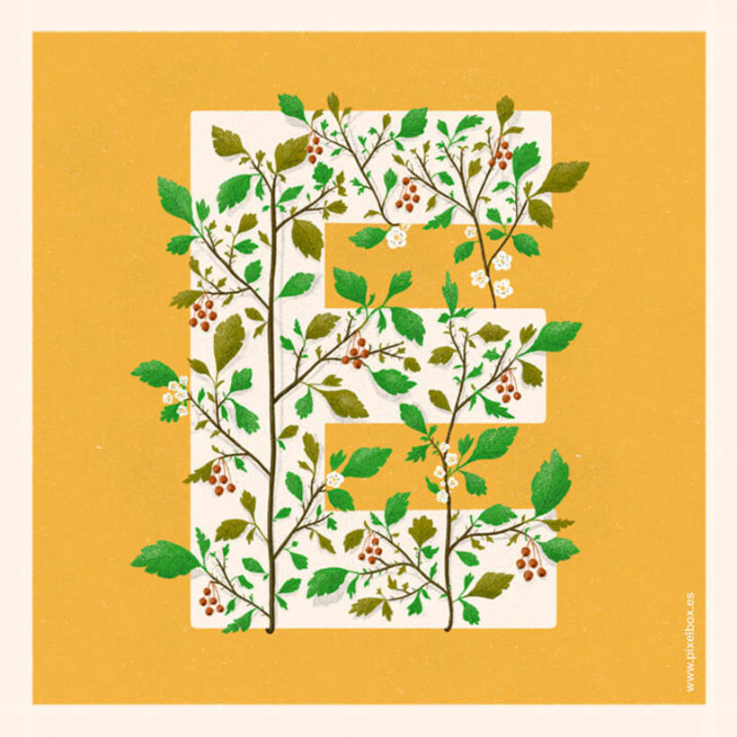 EL ABECEDARIO DE PLANTAS Y FLORES DE PIXELBOX 19