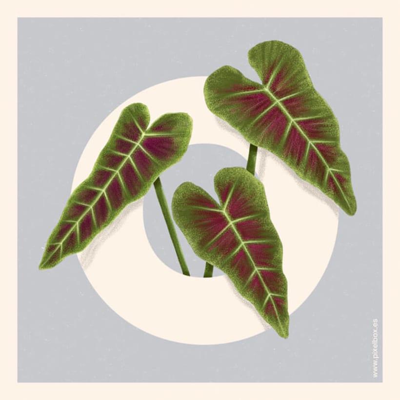 EL ABECEDARIO DE PLANTAS Y FLORES DE PIXELBOX 29