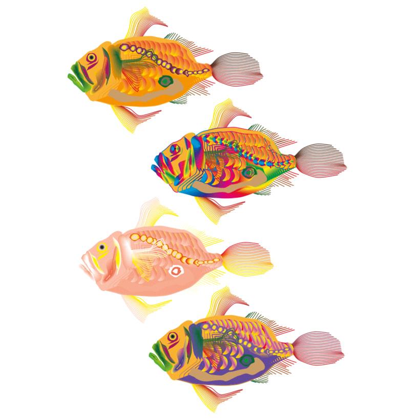 Peces Multicolores! 0