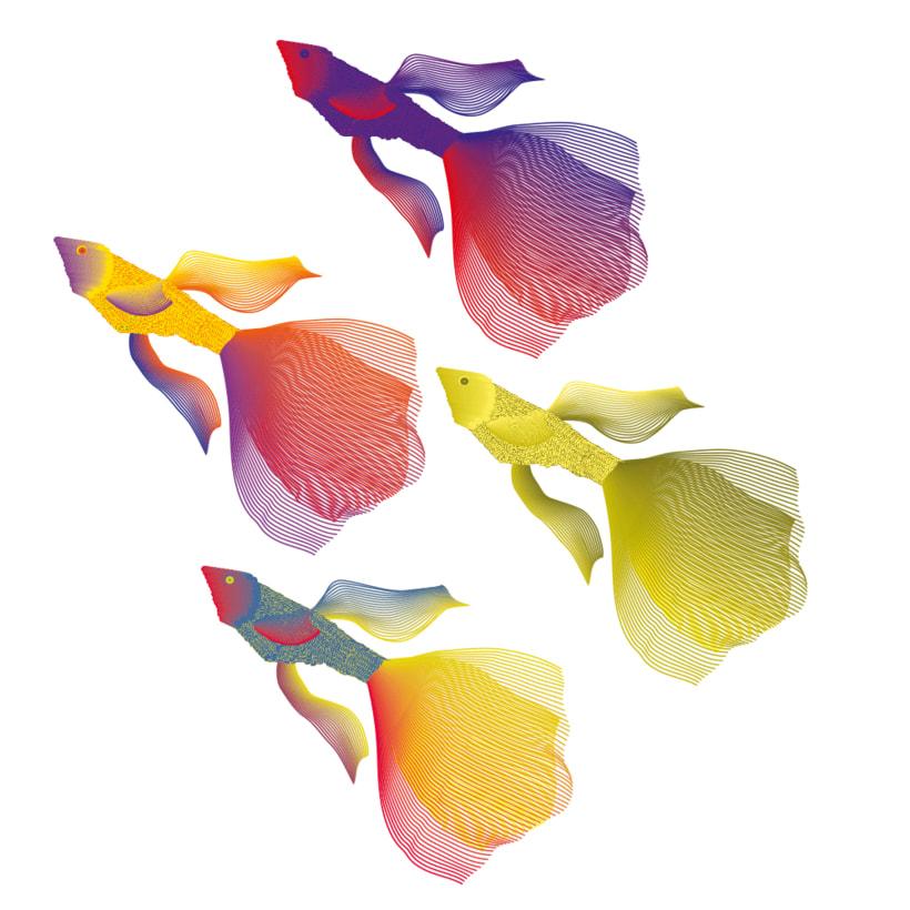 Peces Multicolores! 1