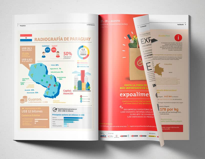 Prom Perú Infographics 5