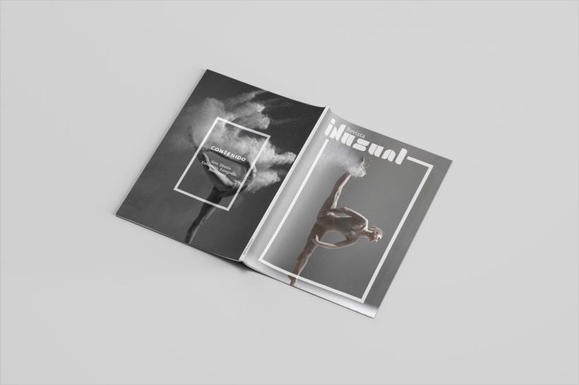 Inusual: Introducción al Diseño Editorial 13