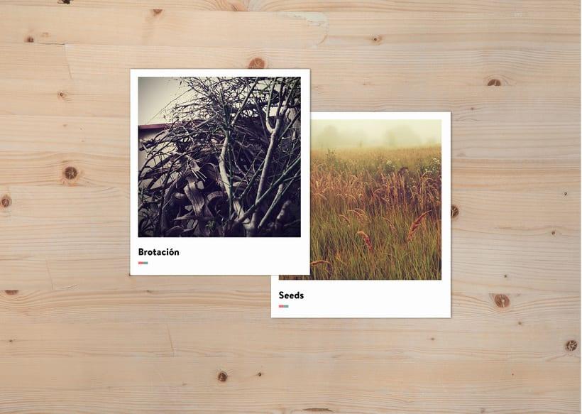 Mi Proyecto del curso: Identidad visual handmade 2