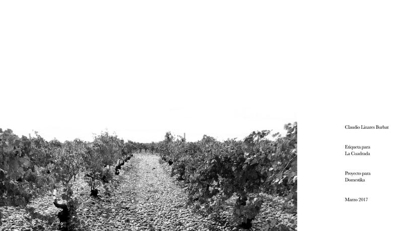 Diseño de una etiqueta de vino: La Cuadrada. 3